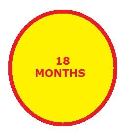 18 months traffic school